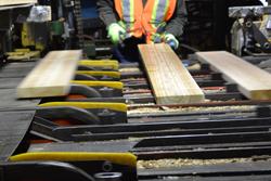 North Enderby Timber Ltd